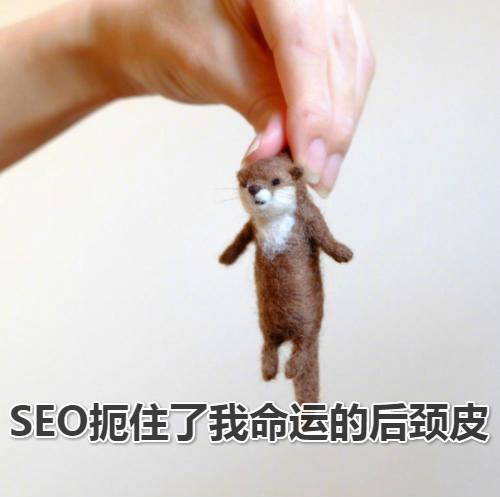 SEO抓住了我命运的后颈皮_meitu_1.jpg